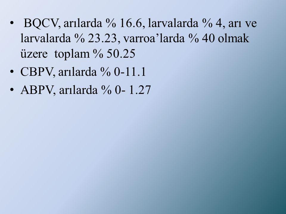 BQCV, arılarda % 16. 6, larvalarda % 4, arı ve larvalarda % 23