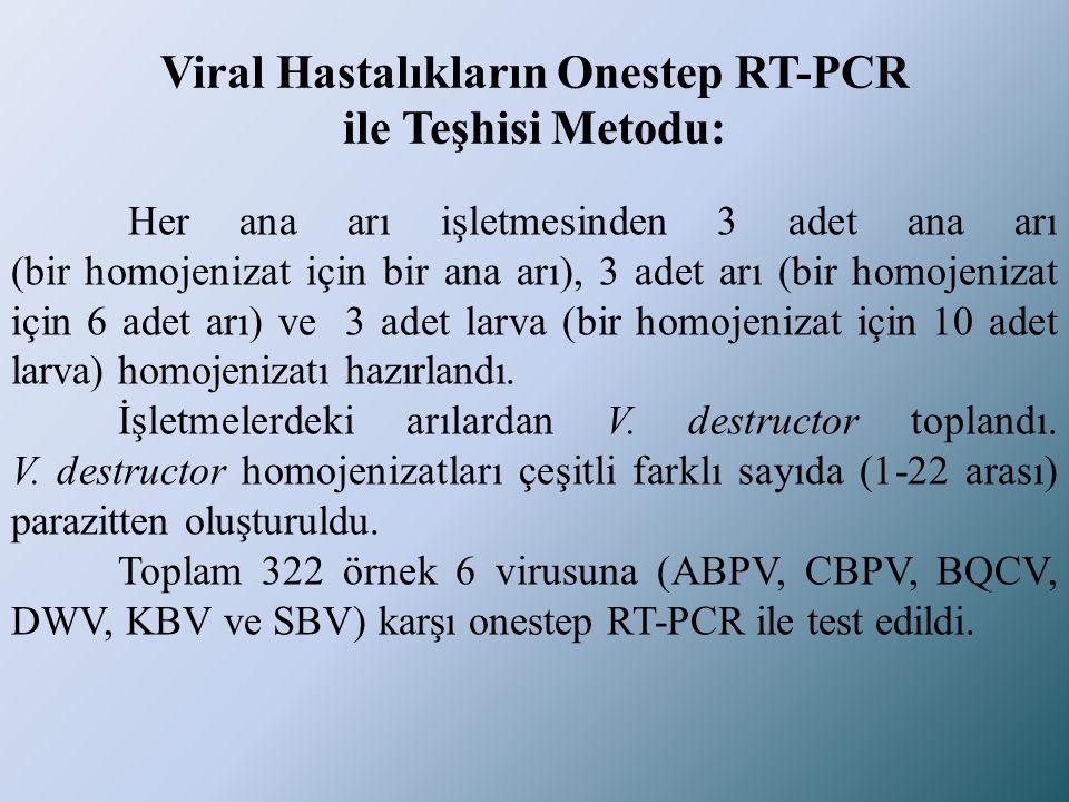 Viral Hastalıkların Onestep RT-PCR ile Teşhisi Metodu: