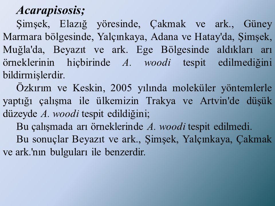 Acarapisosis;