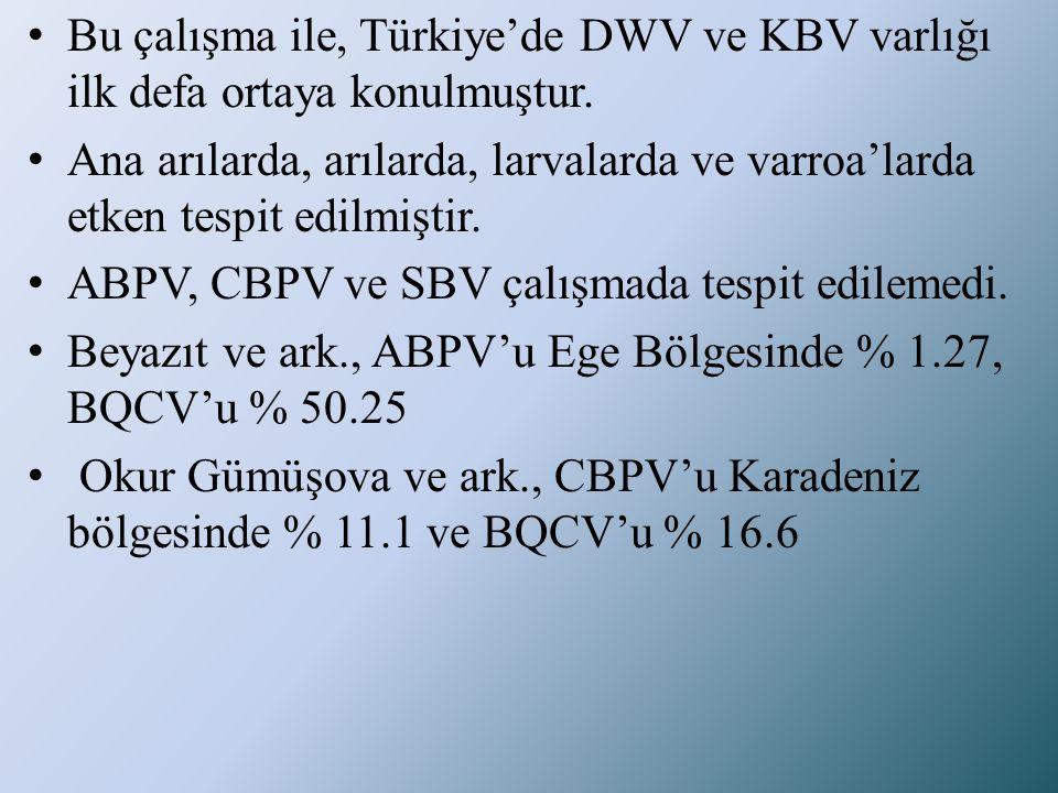 Bu çalışma ile, Türkiye'de DWV ve KBV varlığı ilk defa ortaya konulmuştur.