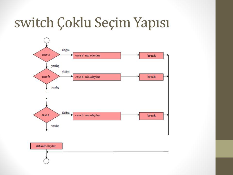 switch Çoklu Seçim Yapısı