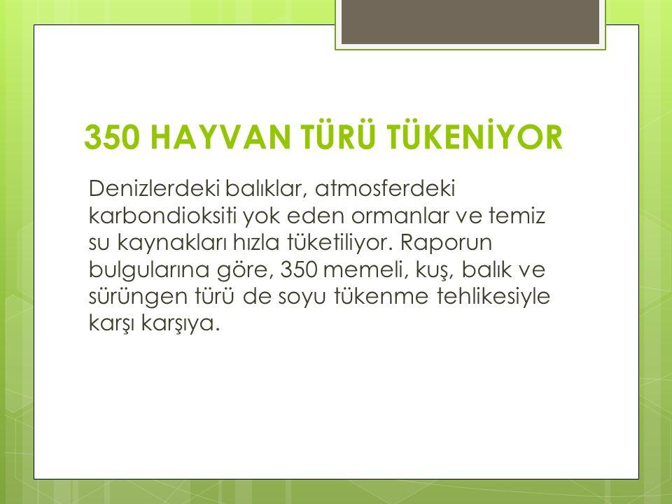 350 HAYVAN TÜRÜ TÜKENİYOR