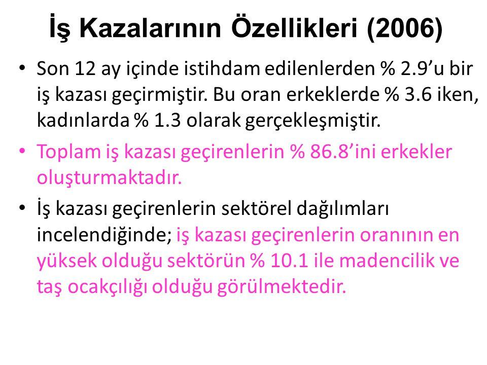 İş Kazalarının Özellikleri (2006)
