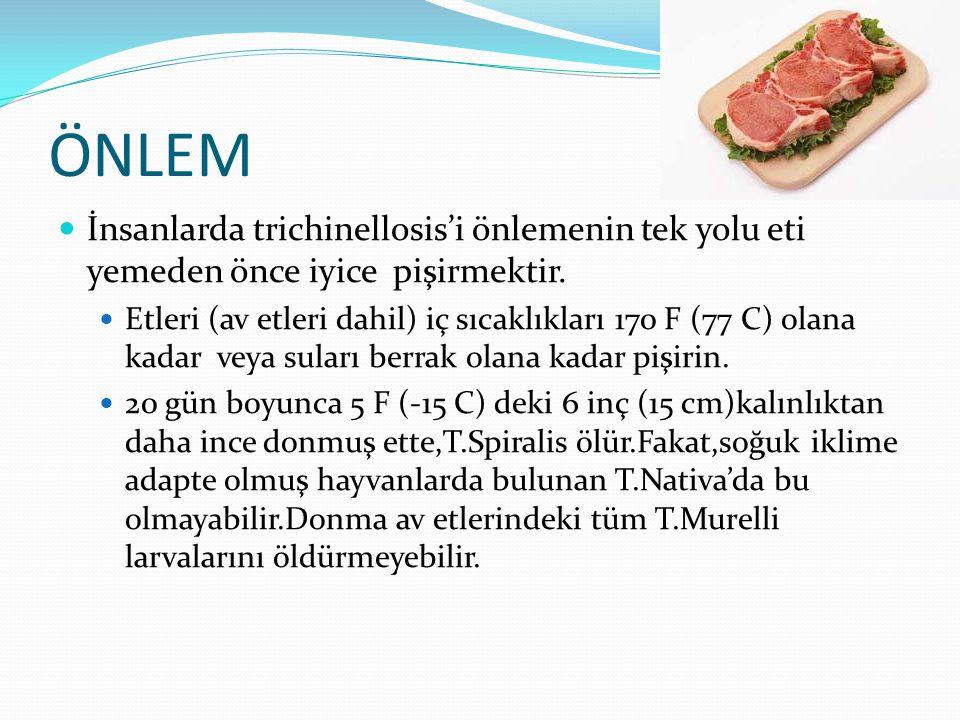 ÖNLEM İnsanlarda trichinellosis'i önlemenin tek yolu eti yemeden önce iyice pişirmektir.