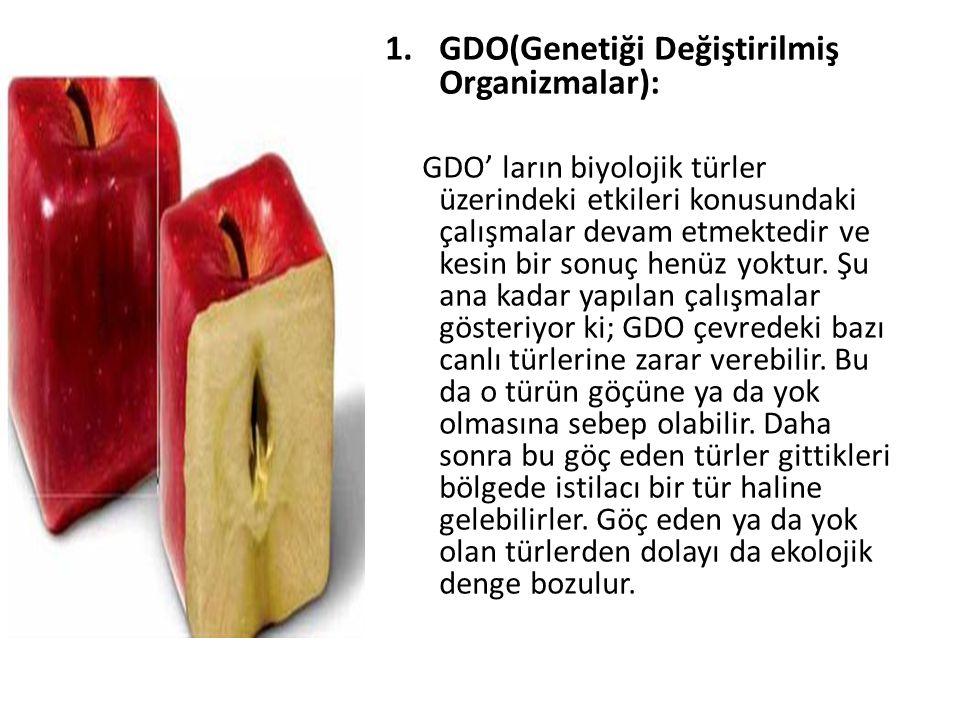 GDO(Genetiği Değiştirilmiş Organizmalar):