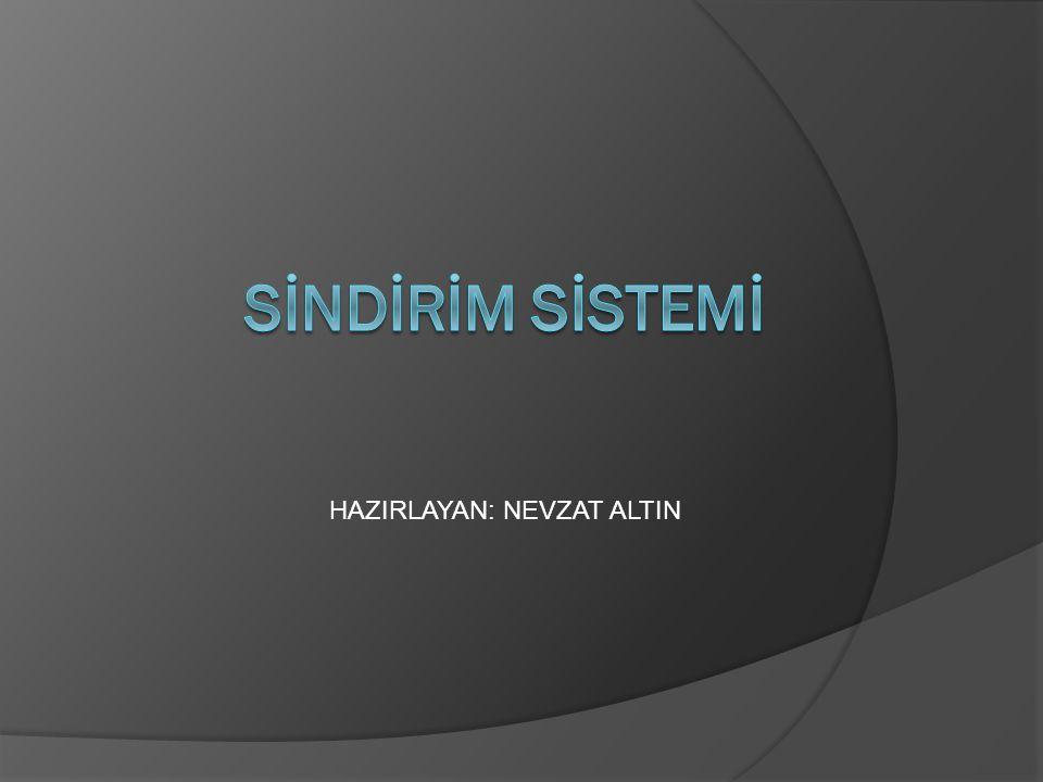 HAZIRLAYAN: NEVZAT ALTIN