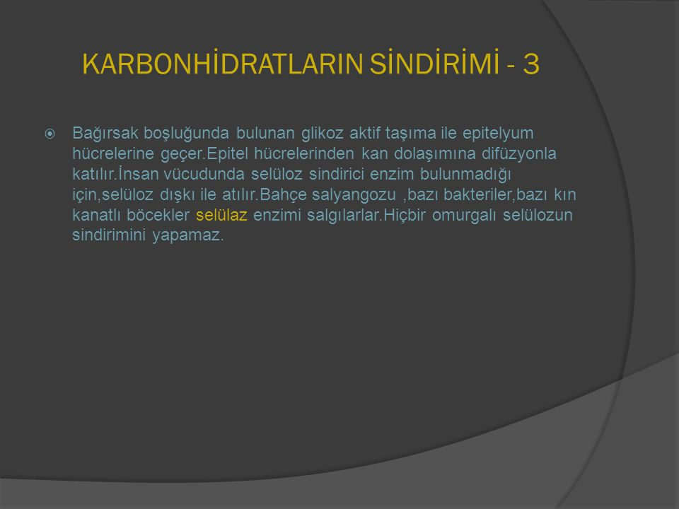 KARBONHİDRATLARIN SİNDİRİMİ - 3