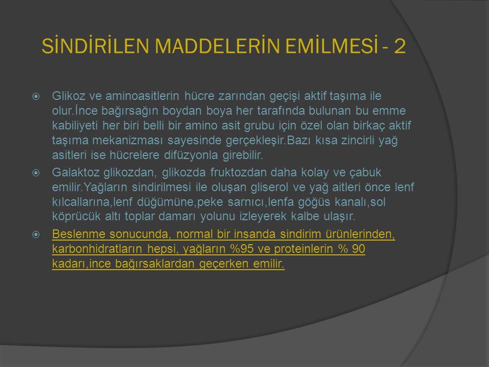 SİNDİRİLEN MADDELERİN EMİLMESİ - 2