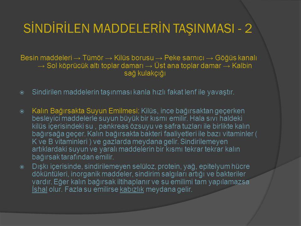 SİNDİRİLEN MADDELERİN TAŞINMASI - 2