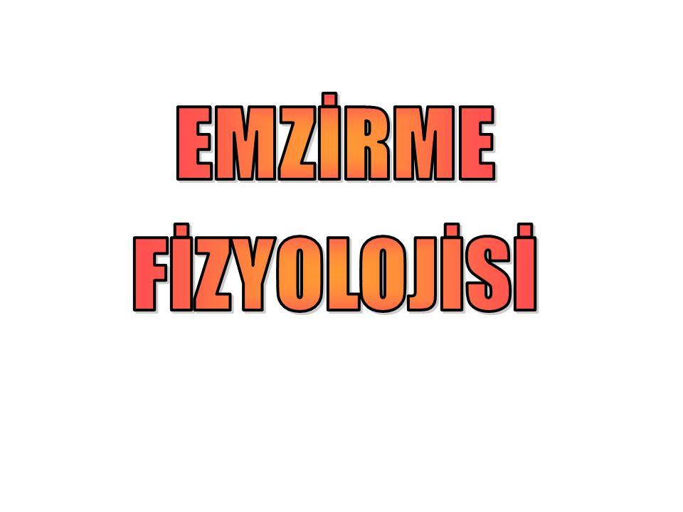 EMZİRME FİZYOLOJİSİ