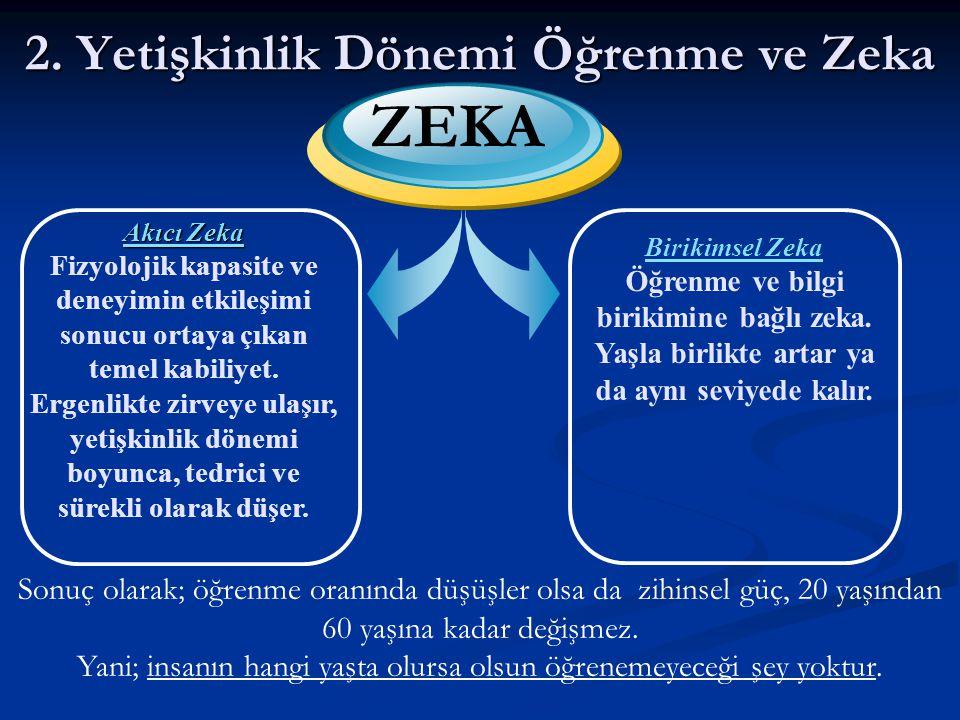 ZEKA 2. Yetişkinlik Dönemi Öğrenme ve Zeka