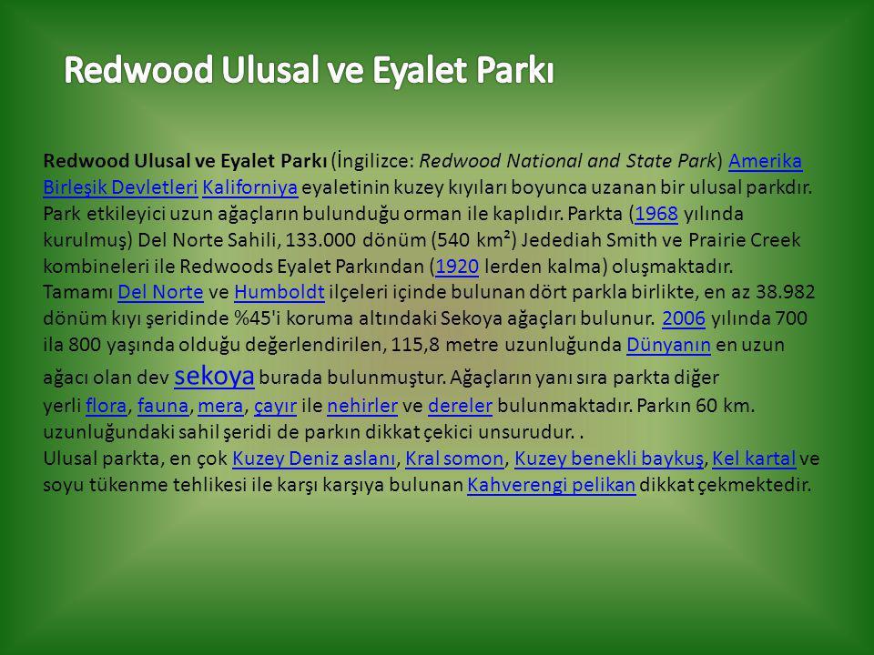 Redwood Ulusal ve Eyalet Parkı