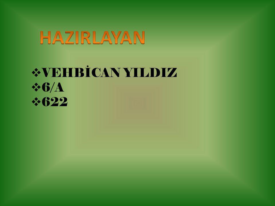 HAZIRLAYAN VEHBİCAN YILDIZ 6/A 622
