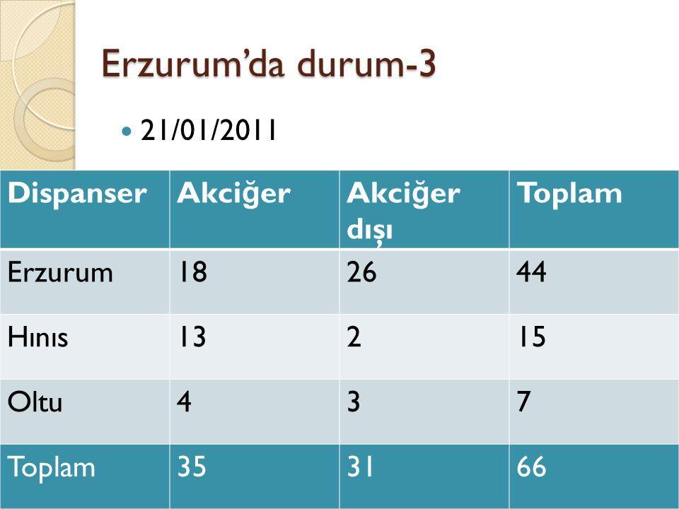 Erzurum'da durum-3 21/01/2011 Dispanser Akciğer Akciğer dışı Toplam