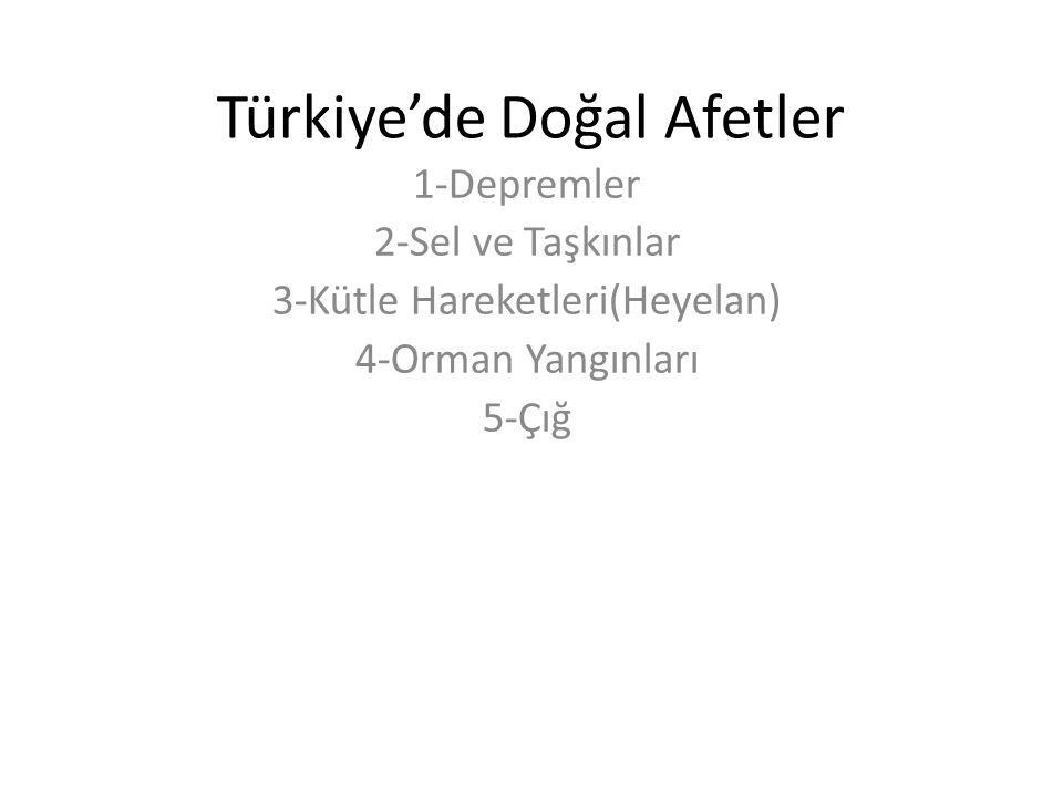 Türkiye'de Doğal Afetler