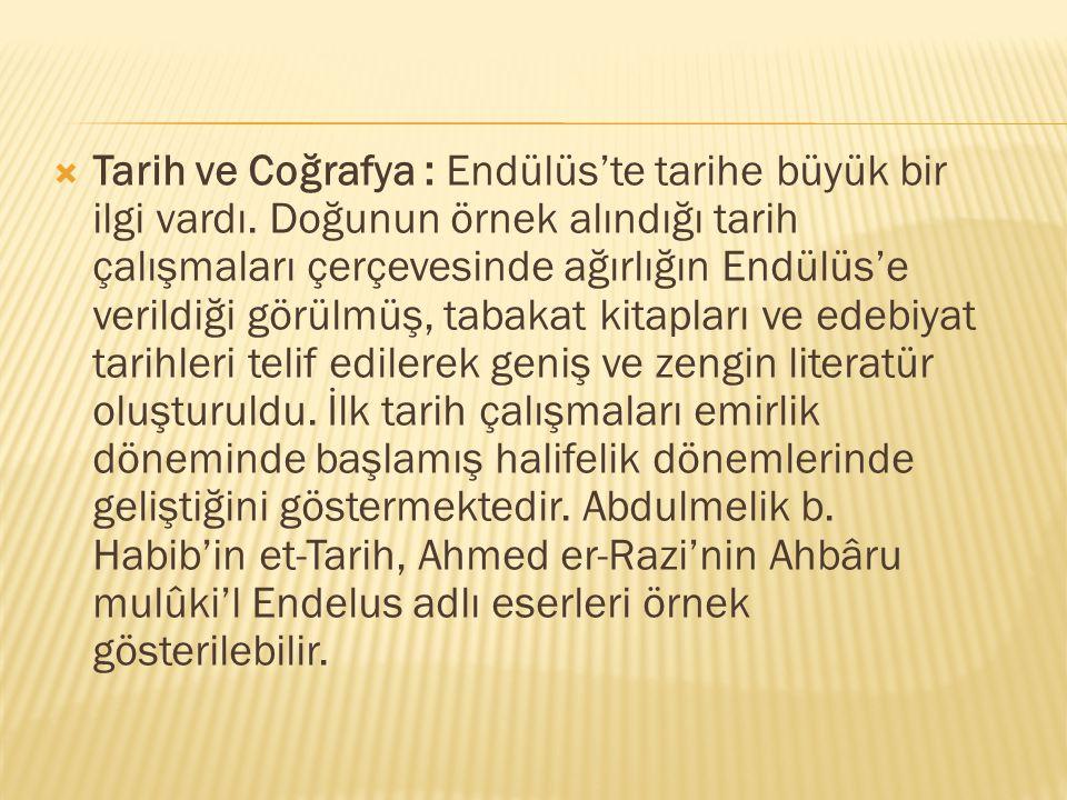 Tarih ve Coğrafya : Endülüs'te tarihe büyük bir ilgi vardı