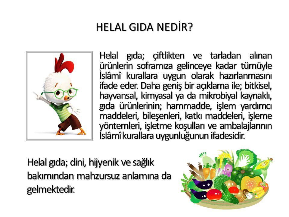 HELAL GIDA NEDİR