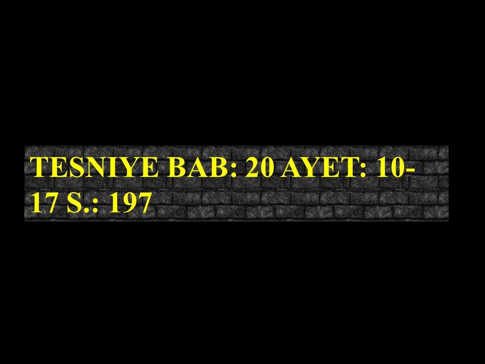 TESNIYE BAB: 20 AYET: 10-17 S.: 197