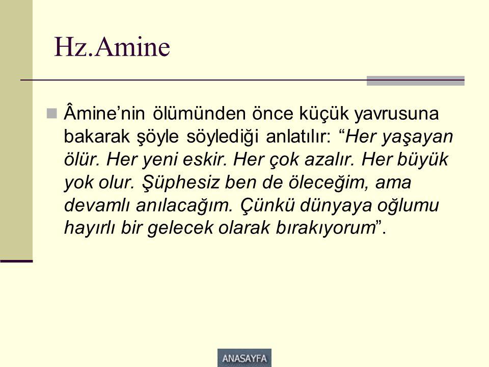 Hz.Amine