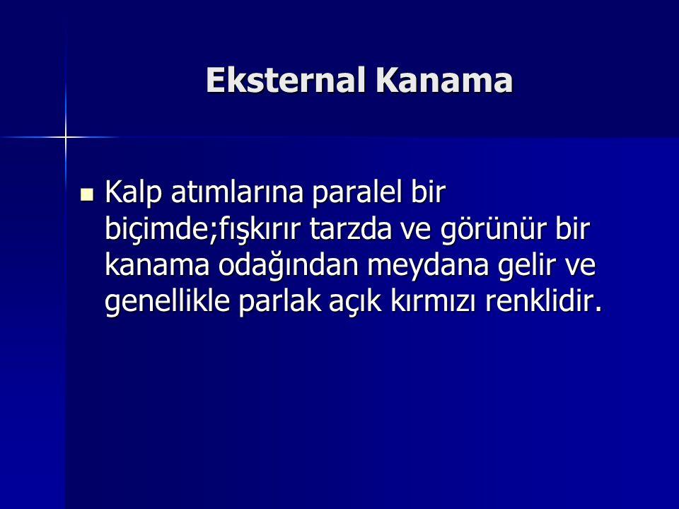 Eksternal Kanama