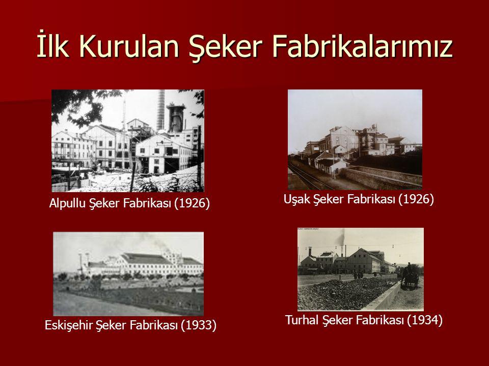 İlk Kurulan Şeker Fabrikalarımız