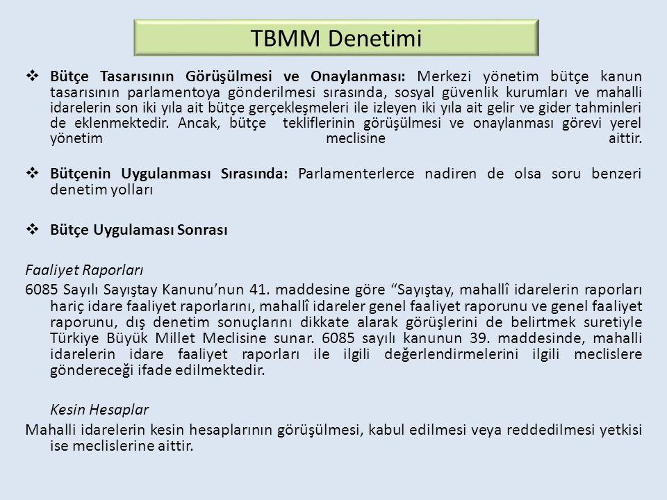 TBMM Denetimi