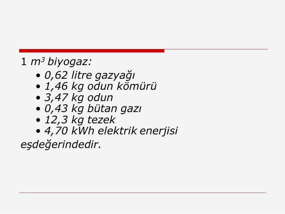 1 m3 biyogaz: • 0,62 litre gazyağı • 1,46 kg odun kömürü • 3,47 kg odun • 0,43 kg bütan gazı • 12,3 kg tezek • 4,70 kWh elektrik enerjisi.
