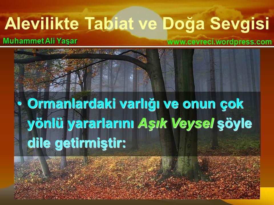 Ormanlardaki varlığı ve onun çok yönlü yararlarını Aşık Veysel şöyle dile getirmiştir: