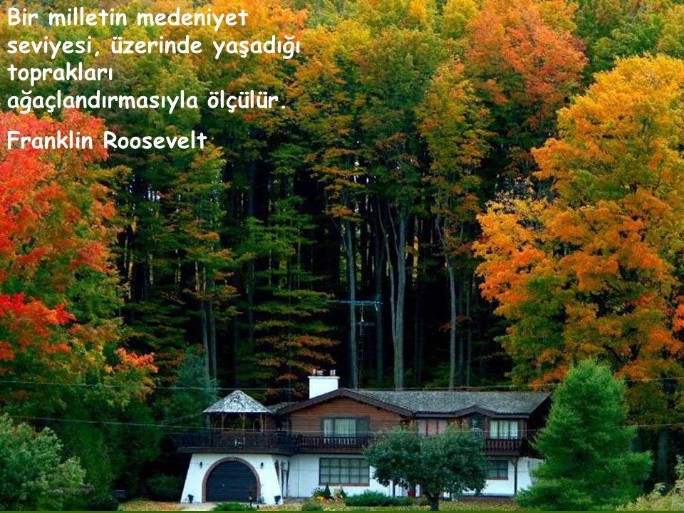 Bir milletin medeniyet seviyesi, üzerinde yaşadığı toprakları ağaçlandırmasıyla ölçülür.