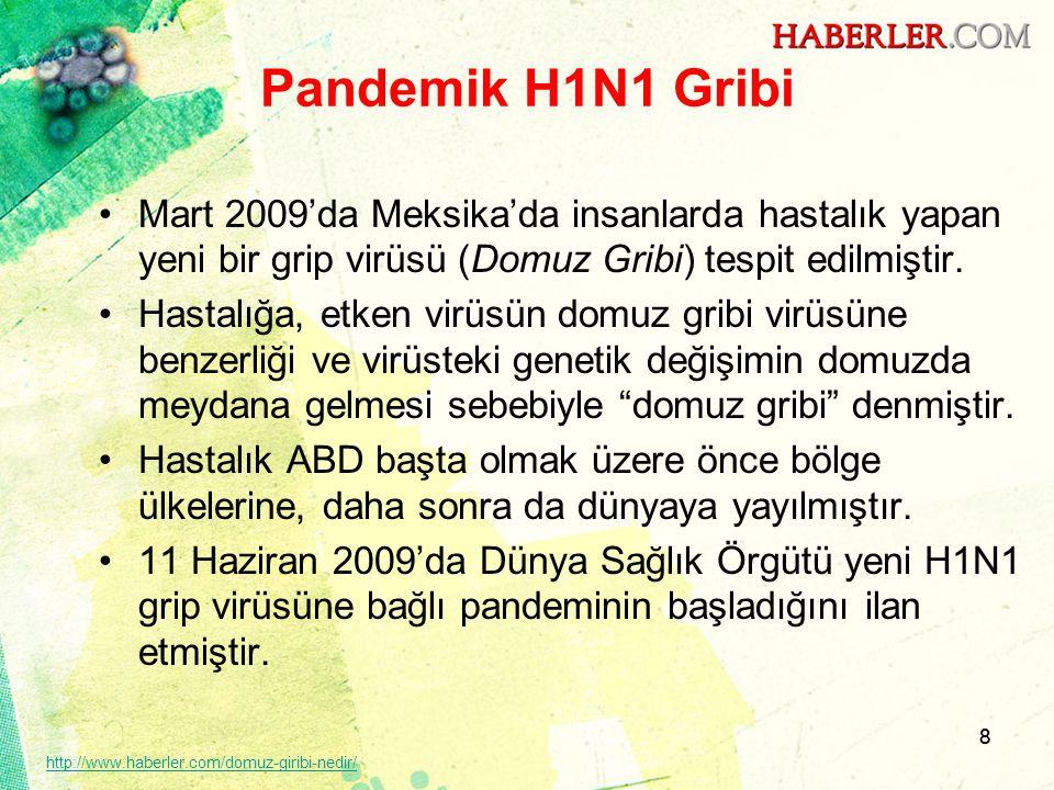 Pandemik H1N1 Gribi Mart 2009'da Meksika'da insanlarda hastalık yapan yeni bir grip virüsü (Domuz Gribi) tespit edilmiştir.