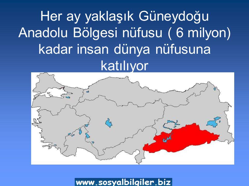 Her ay yaklaşık Güneydoğu Anadolu Bölgesi nüfusu ( 6 milyon) kadar insan dünya nüfusuna katılıyor