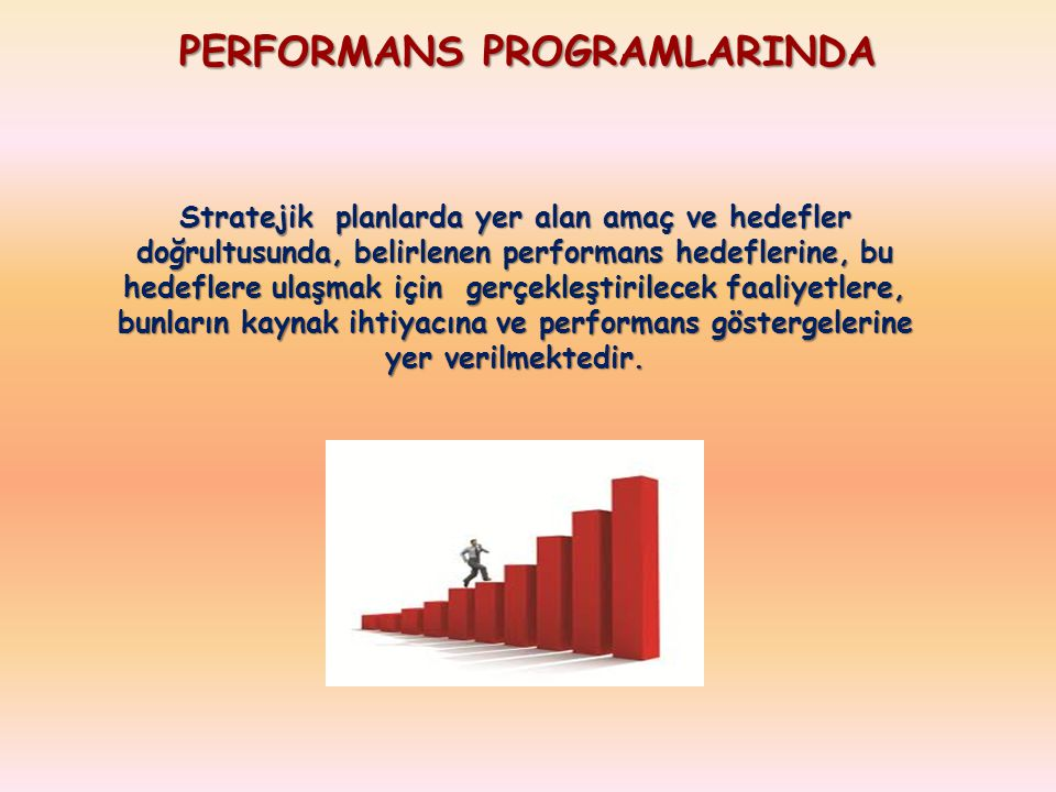 PERFORMANS PROGRAMLARINDA