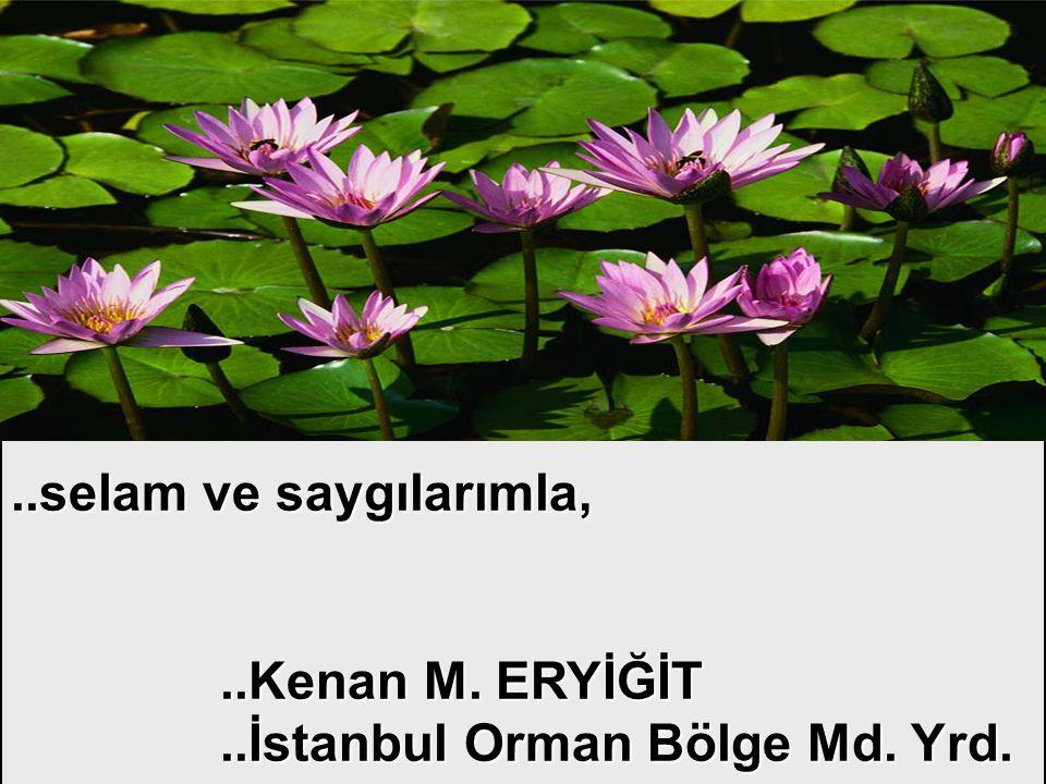..selam ve saygılarımla, ..Kenan M. ERYİĞİT ..İstanbul Orman Bölge Md. Yrd.