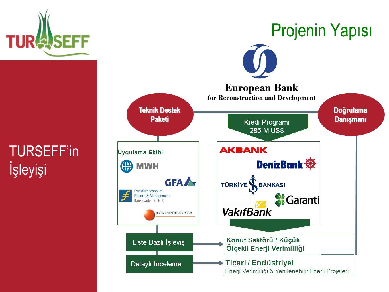 Projenin Yapısı TURSEFF'in İşleyişi PROFITABILITY Teknik Destek Paketi