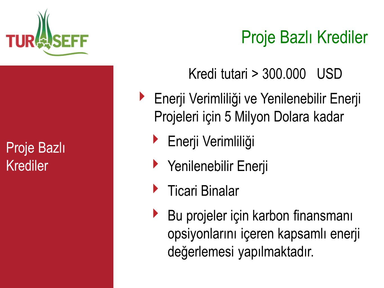 Proje Bazlı Krediler C Kredi tutari > 300.000 USD