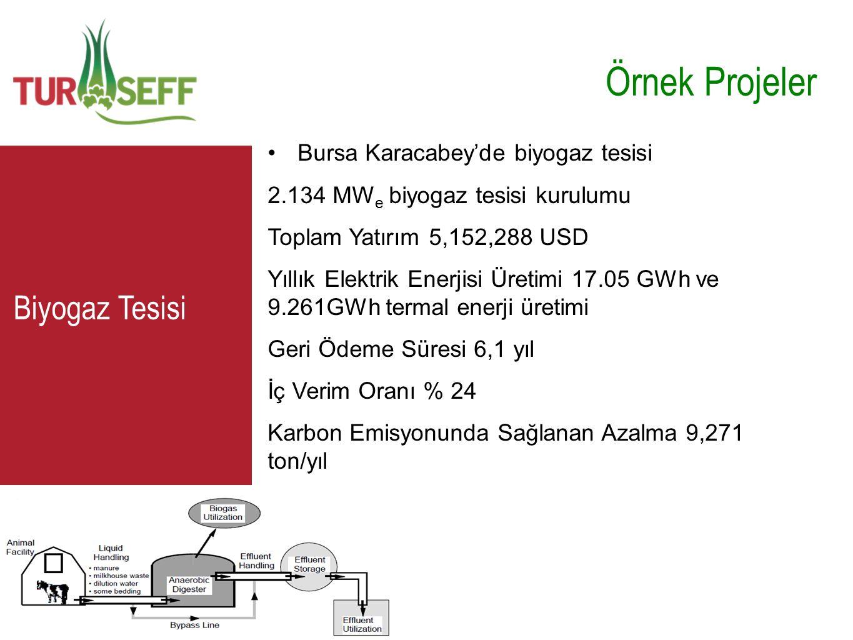Örnek Projeler C Biyogaz Tesisi Bursa Karacabey'de biyogaz tesisi