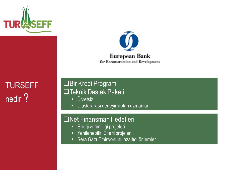 TURSEFF nedir Bir Kredi Programı Teknik Destek Paketi