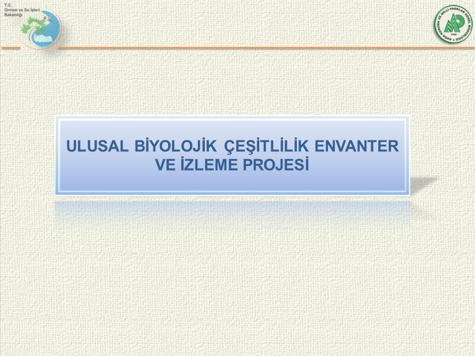 ULUSAL BİYOLOJİK ÇEŞİTLİLİK ENVANTER VE İZLEME PROJESİ