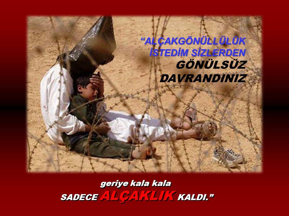 SADECE ALÇAKLIK KALDI.