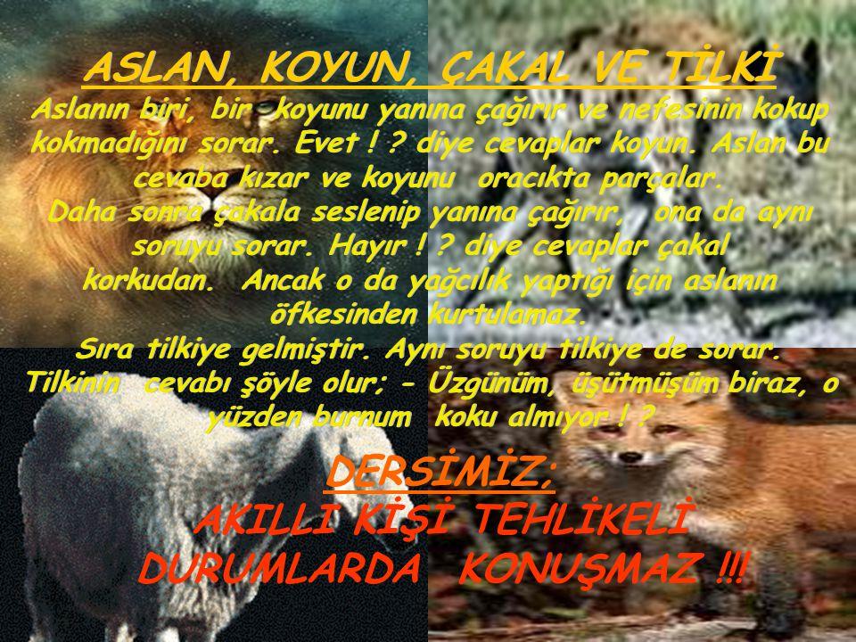 DERSİMİZ; AKILLI KİŞİ TEHLİKELİ DURUMLARDA KONUŞMAZ !!!