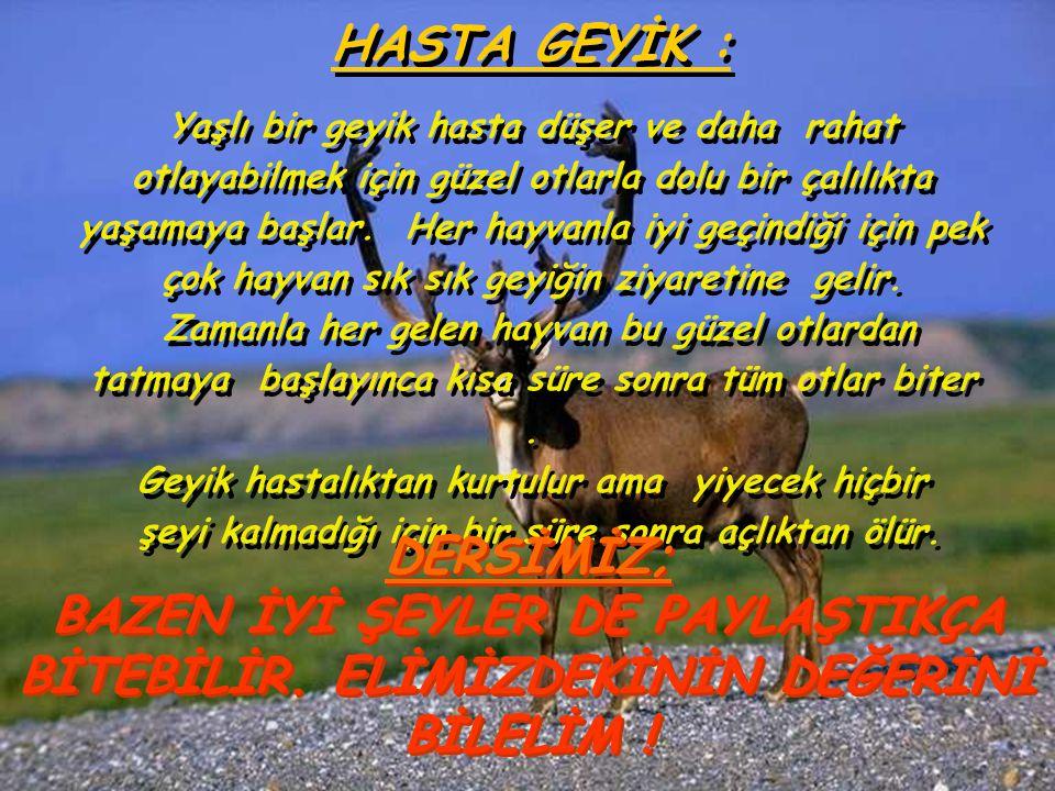 HASTA GEYİK :