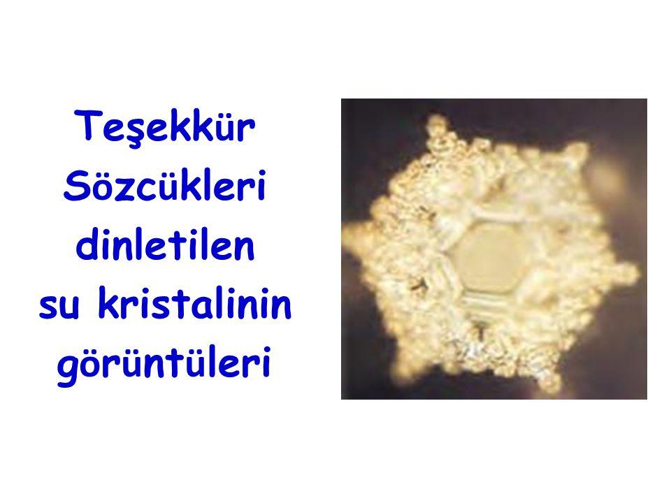 Teşekkür Sözcükleri dinletilen su kristalinin görüntüleri