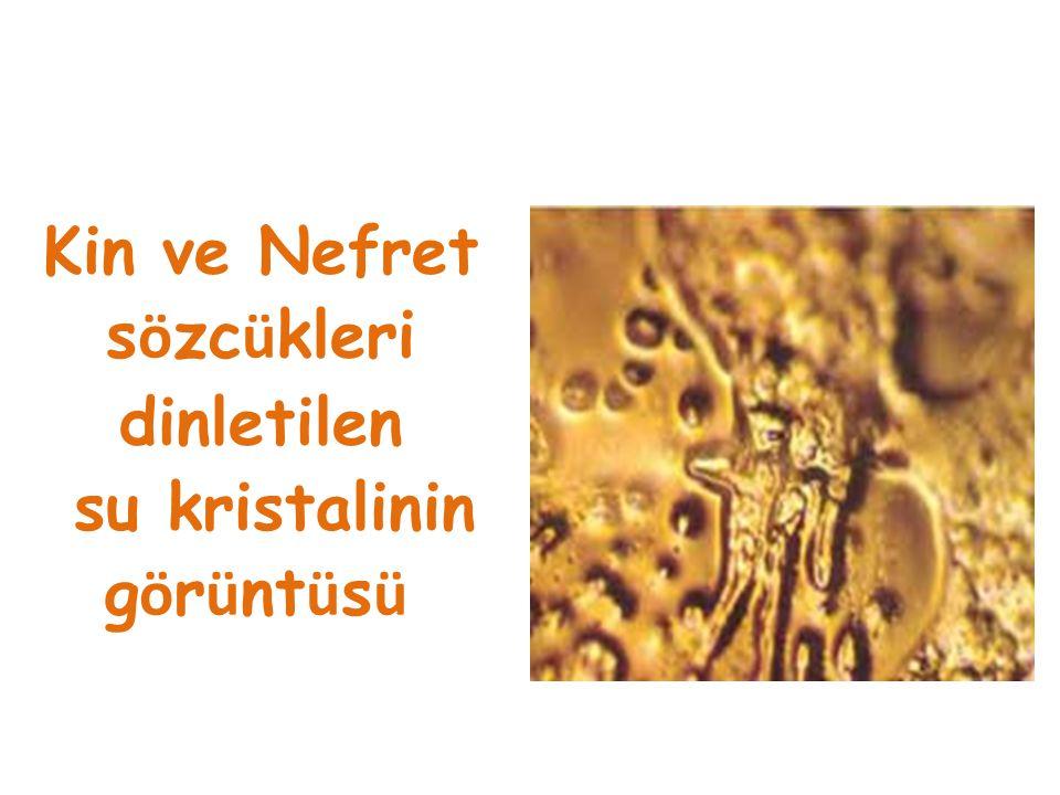 Kin ve Nefret sözcükleri dinletilen su kristalinin görüntüsü
