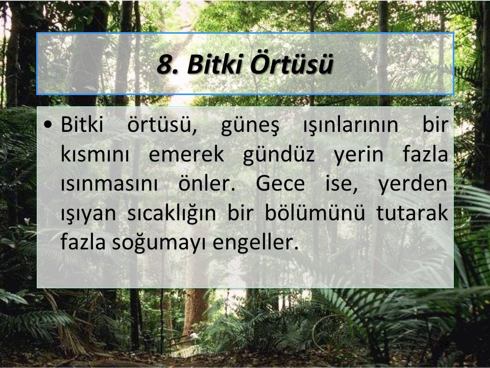 8. Bitki Örtüsü