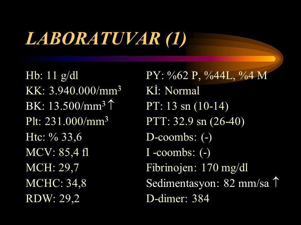 LABORATUVAR (1) Hb: 11 g/dl PY: %62 P, %44L, %4 M
