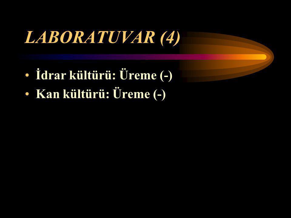 LABORATUVAR (4) İdrar kültürü: Üreme (-) Kan kültürü: Üreme (-)
