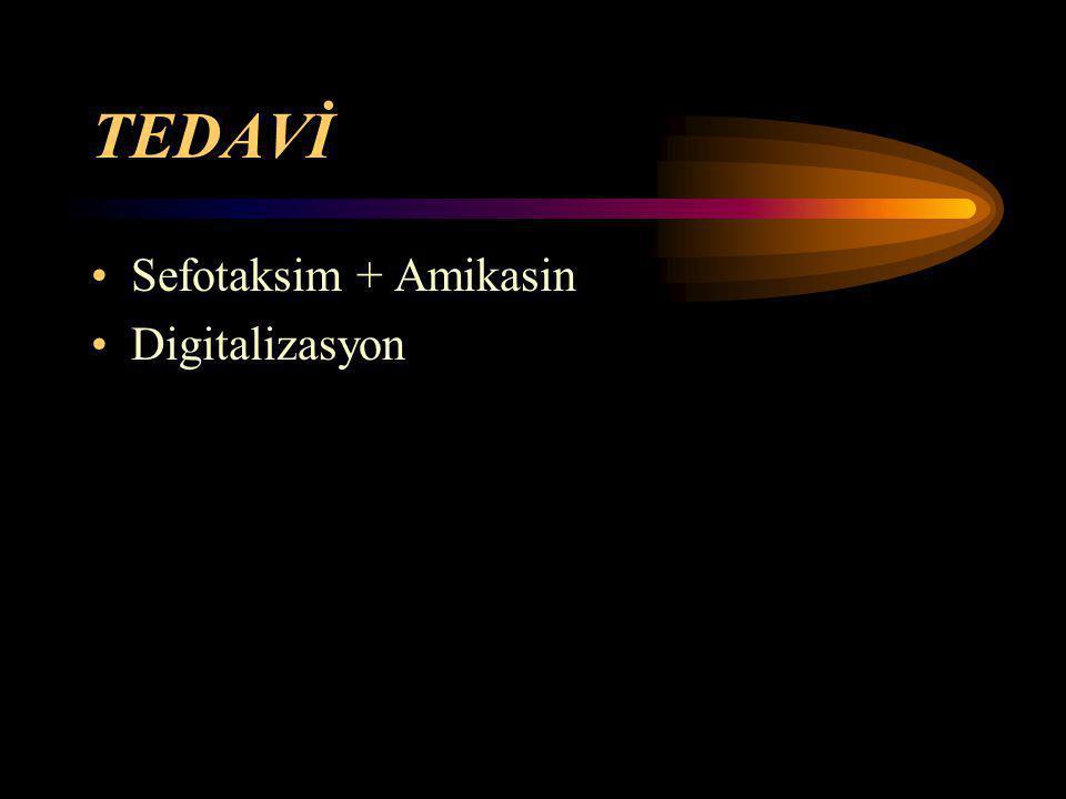 TEDAVİ Sefotaksim + Amikasin Digitalizasyon