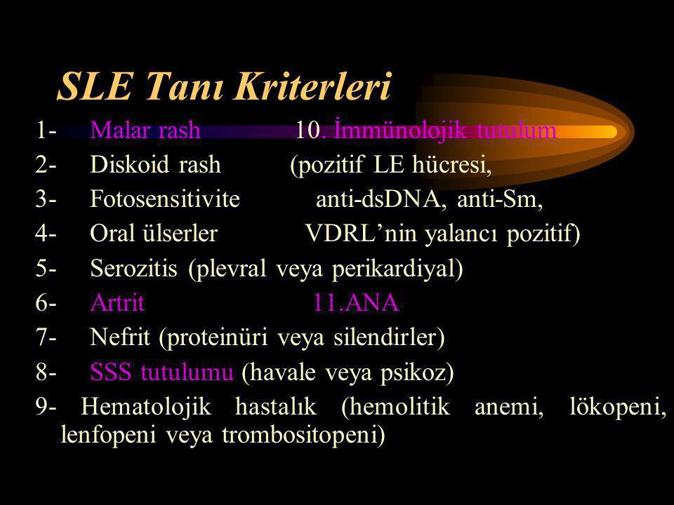 SLE Tanı Kriterleri 1- Malar rash 10. İmmünolojik tutulum