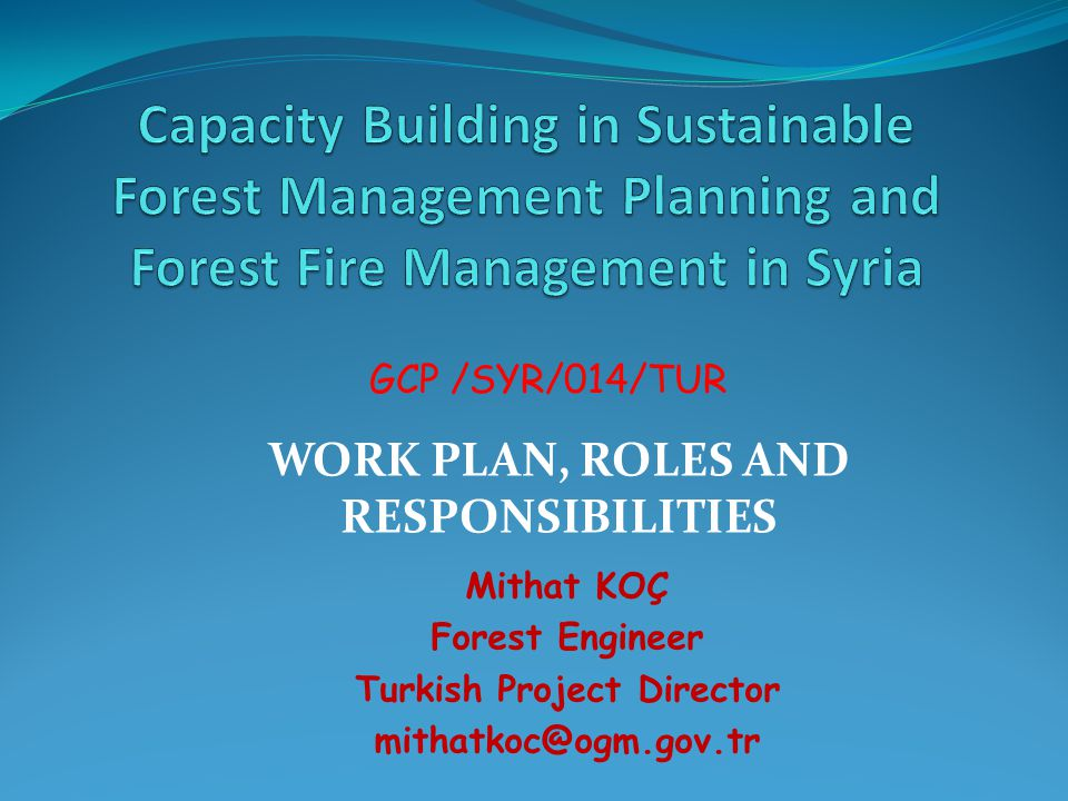 WORK PLAN, ROLES AND RESPONSIBILITIES Turkish Project Director
