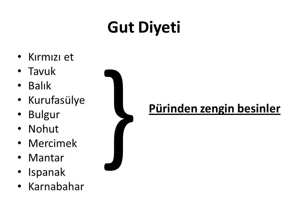 } Gut Diyeti Pürinden zengin besinler Kırmızı et Tavuk Balık